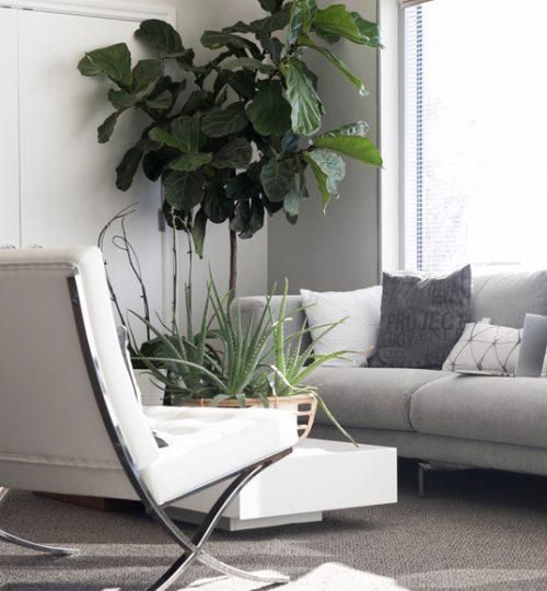 living-room2-free-img-2-1-1-1-1-1-4-1-1-1-2-1-1-1.jpg